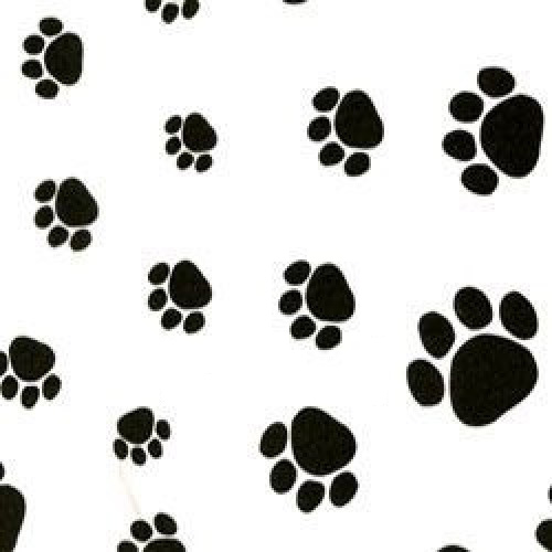 Paw Patterned Tissue Paper